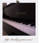 グランドピアノの鍵盤です。